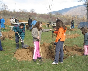 Los asistentes disfrutaron plantando árboles