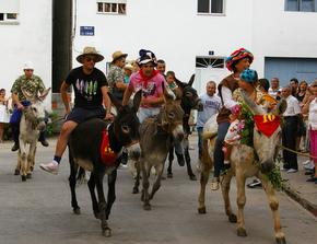 Los burros tomaron la salida poco después de las 19.30 horas