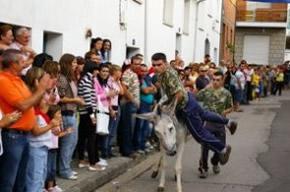 La carrera de burros es el principal atractivo de las fiestas de San Bartolo