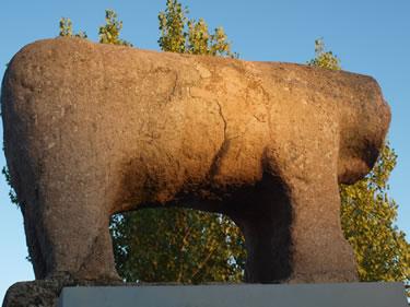 Toro de Salamanca