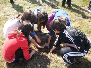 Los alumnos de los centros escolares durante la plantación de los árboles