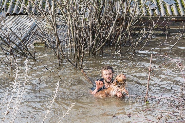 rescate perro 6 2