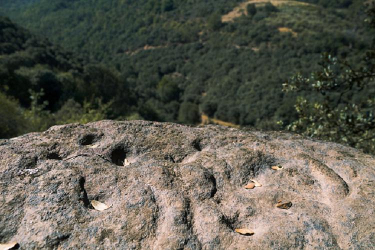 Petroglifos Santa Marina de Torre