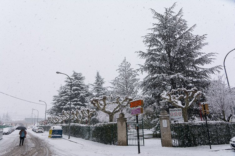 Nieve Bembibre